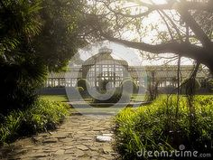 A soft sunlit view of the Pearson Conservatory in St Georges Park, Port Elizabeth, South Africa