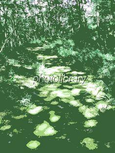 木漏れ日 イラスト - Google 検索