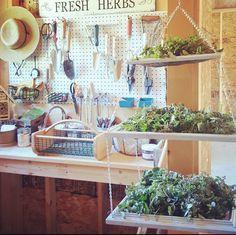 Isn't this a great idea for drying herbs from the garden?  From Lisa Steele of Fresh Eggs Daily. https://2.bp.blogspot.com/-_j2VvOKYno4/WAJFw8BoNpI/AAAAAAAB5fc/XedTA85kE3sfpP2wcW4XWHr-FPKpg5MLACLcB/s1600/Screenshot%2B2016-10-15%2Bat%2B10.16.17%2BAM.png