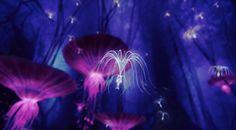 Avatar flowers