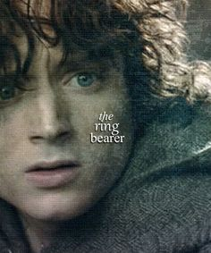 """""""Nine companions. So be it. You shall be the fellowship of the ring."""""""