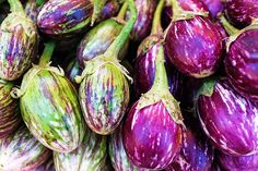 Purple eggplants by Mahmoud Habboush on 500px