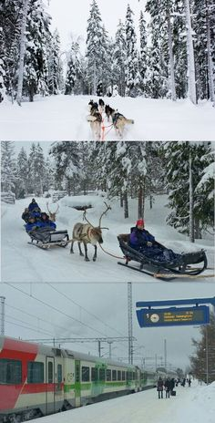 Which transportation would you prefer- 1 Husky 2 Reindeer 3 Train? A few of the 'cool' ways @Visit Finland bloggers got arnd this past wk.
