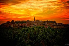 Briones, La Rioja, Spain- toured this area on our honeymoon last year! loved it!!!