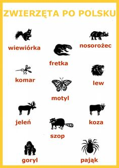 polish animals