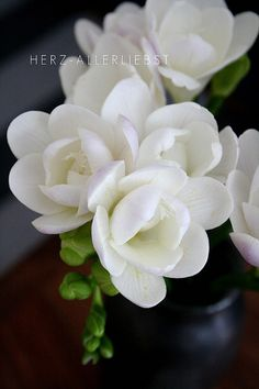 ❤❤❤ Copyrights unknown. White Freesia.