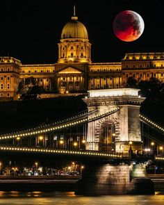 Would you want to take the best pictures of Chain Bridge in Budapest? Visit our sightseeing cruise than you can see from special perspective! Beautiful Places In The World, Most Beautiful Cities, Budapest Things To Do In, City Landscape, Tourist Places, Portugal Travel, Budapest Hungary, Best Cities, Cool Places To Visit