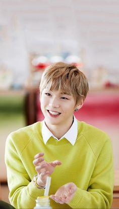 Wanna One x Innisfree: Wanna One Go in Jeju  Kang Daniel Wallpaper