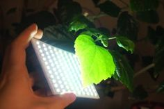 $5 Small Battery Powered LED Panel : 37 Steps (with Pictures) - Instructables Lighting Setups, Led Panel, Photo Studio, Things To Come, Pictures, Photos, Photo Illustration, Photography Studios, Resim