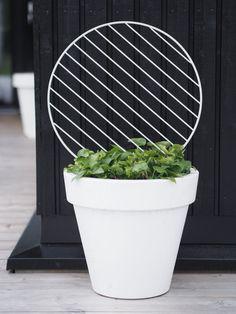 For vining plants use an old wire cooling rack! Terrace Garden, Garden Art, Garden Design, Home And Garden, Garden Ideas, Small Gardens, Outdoor Gardens, Open Air, Green Plants