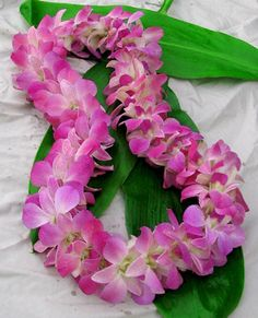 Hawaiian flowers sent to any US state. Flower leis, loose orchid blooms and Hawaiian gifts. Graduation leis are our specialty. Hawaiian Leis, Hawaiian Decor, Hawaiian Flowers, Flower Lei, Flower Garlands, Orchid Lei, Graduation Leis, In Memory Of Dad, Dendrobium Orchids