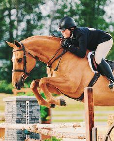 we our ambassadors (and their ponies of course) #teamTFE ⋆ @chicaconcaballos ⋆ @sammiesmith.eq ⋆ @ellenmolleruseq ⋆ @texie_loyd ⋆…