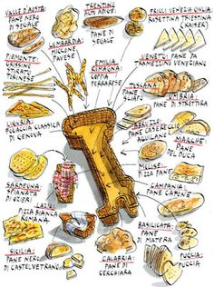 I love Italian food. so much. *sigh*    300 different kinds of bread found in Italy. Drawing by Michele Tranquillini