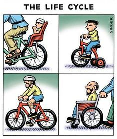 The Life Cycle :)