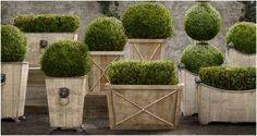 How to Use Planters to Beautify your Outdoor Areas