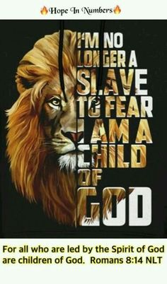 ideas quotes about strength life encouragement bible verses Lion Quotes, New Quotes, Quotes About God, Inspiring Quotes About Life, Inspirational Quotes, Rocky Quotes, Wisdom Quotes, Motivational Quotes, Encouraging Bible Verses