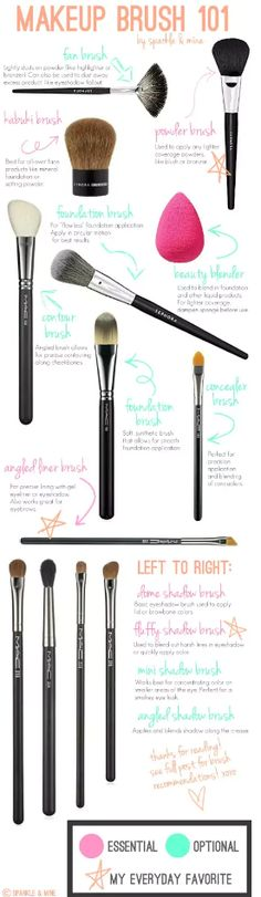 What are all of these brushes for?