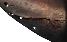 This turtle was carved on the hull of a 600-year-old canoe found in New Zealand. Turtles are rare in pre-European Maori art. The engraving might be a nod to the Maori's Polynesian ancestors, who revered the seafaring reptiles.