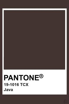 Brown Paint Colors, Paint Colors For Home, Pantone Colour Palettes, Pantone Color, Color Box, Colour Board, Brown Pantone, Pantone Tcx, Paint Color Swatches