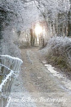 snow lane