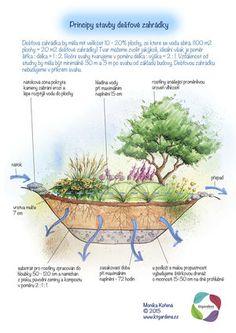 Garden Plants, Indoor Plants, 20 M2, Landscape Architecture Design, Companion Planting, Water Systems, Growing Plants, Dream Garden, Garden Projects