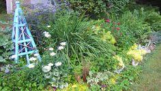 Mid-Atlantic Gardening: Brighten a Shade Garden Garden Shrubs, Shade Garden, Lawn And Garden, Shade Shrubs, Front Yard Landscaping, Diy Projects, Backyard, Shades, Gardening