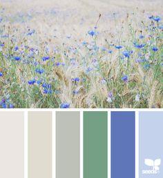 Foraged Hues Design Seeds, Colour Schemes, Color Combos, Nature Color Palette, Colour Palettes, Colour Field, Color Balance, Pantone, World Of Color
