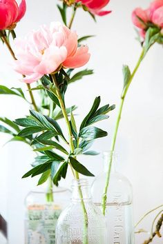 a simple few ways you can go green for april as earth day approaches #GoEcoChic