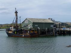 Mangonui Kiwiana, Sailing Ships, My Dream, New Zealand, Boat, Places, Image, Design, Dinghy