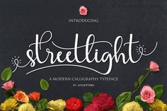 FREE for the next 4 days! :D The Streetlight Script font is a fresh, modern script font. It's decorative characters mare drawn in a handmade calligraphy style. This fonts looks beautiful on wedding Calligraphy Fonts, Script Fonts, All Fonts, Modern Calligraphy, Handwritten Fonts, Monogram Fonts, Typography Fonts, Monogram Letters, Free Monogram