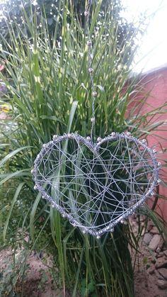 My Arts, Garden, Plants, Garten, Lawn And Garden, Gardens, Plant, Gardening, Outdoor