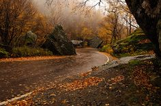 Visit Smuggler's Notch, Vermont in the Fall - ★Check!★