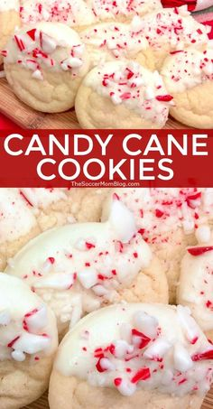 favorite christmas cookie Candy Cane Cookies: Soft sugar cookies dipped in rich white chocolate and crushed peppermint candies. A wintery tasting treat and one of our favorite Christmas cookie recipes! Hot Fudge Cake, Hot Chocolate Fudge, Chocolate Peppermint Cookies, White Chocolate, Tolle Desserts, Köstliche Desserts, Delicious Desserts, Dessert Recipes, Winter Desserts