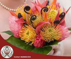 Protea wedding bouquets often feature king proteas, heres something different. Pin cushion wedding bouquets are vibrant and eye catching. Visit Bofberg Flowers if you have ideas for your special day. Hawaiian Wedding Flowers, Tropical Wedding Bouquets, Protea Wedding, Floral Bouquets, Tropical Floral Arrangements, Flower Arrangements, Exotic Flowers, Tropical Flowers, Bird Of Paradise Wedding