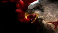 Animated wallpaper, screensaver for cellphone I Love You Means, Bird Gif, Gif Photo, Bird Feathers, Eagles, Bald Eagle, Birds, Fantasy, Painting
