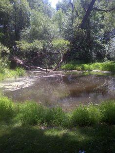 Étang dans le Parc Prairies,Laval Laval, Country Roads, River, Photos, Outdoor, Park, Outdoors, Pictures, Outdoor Games