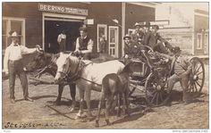 RP: OX & Horse wagon at DEERING Farm Machines barn , STETTLER , Alberta , Canada , PU-1908