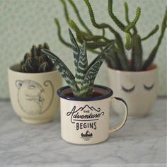 2 mini mugs Adventure Gentlemen's Hardware