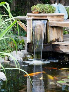 Fountain, garden bench & Koi pond