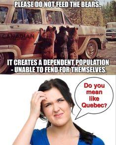 Liberal Hypocrisy, Liberal Logic, Truth Hurts, It Hurts, Funny Images, Funny Pictures, Funny Pics, Funny Quotes, Conservative Politics