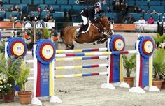 Fellers Flexes to the Top | The Equestrian News
