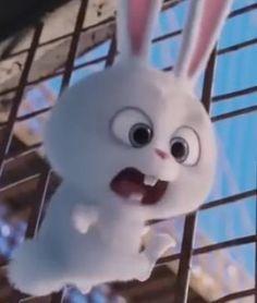 Cute Disney Drawings, Cute Little Drawings, Cute Disney Wallpaper, Cute Cartoon Wallpapers, Moana Fan Art, Snowball Rabbit, Rabbit Wallpaper, Pets Movie, Cute Bunny Cartoon