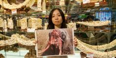 Tthe blame for the elephant poaching crisis of the 1980s, which resulted in the global ivory ban of 1989, can be laid squarely at the feet of the Hong Kong ivory traders. And now they're at it again.At a time when it has been scientifically proven that Africa lost 100,000 elephants from 2010  through 2012, no one in Hong Kong is questioning why the city's ivory traders are still clinging onto their old stocks of ivory, which should have been depleted long ago.And that's why our groups have…
