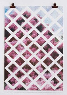THE GRID, THE TRELLIS