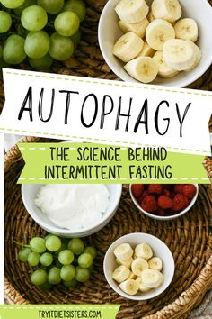 Autophagy is cellular breakdown of weak and old cells to be used as energy and building blocks to create newer, stronger cells. Our cells begin autophagy when we are in a fasting state. The benefits of intermittent fasting go far beyond just a diet. Learn the fascinating scientific facts that will help you on your health journey. Help Me Lose Weight, Diet Plans To Lose Weight Fast, Lose Weight At Home, Weight Gain, How To Lose Weight Fast, What Is Autophagy, One Meal A Day, Weight Loss For Women, Best Diets