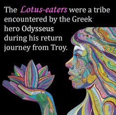 8 Best Lotus Eaters Images Lotus Flower Greek Mythology Lotus