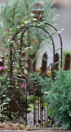fairy-garden arbor www.miniaturegardenshoppe.com