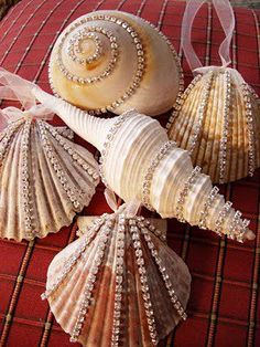 Cherrypik Jewels: Seashell ornaments 2010 Where do you get these rhinestones?Cherrypik Jewels: Seashell ornaments using rhinestone and crystal trim to sparkle up some seashells.Iva Lopez says, DIY sea shell ornaments! These are exquisite with the Cry Seashell Christmas Ornaments, Beach Christmas, Coastal Christmas, Christmas Holidays, Christmas Decorations, Snowman Ornaments, Shell Decorations, Cottage Christmas, Hanging Decorations