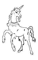 13 best spirit lucky disney malvorlagen images   horse coloring pages, coloring pages, spirit