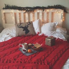 IDEA: wrap Christmas lights around our bed frame, use as night light also!